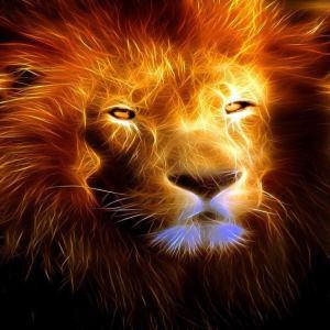 Lion electronic